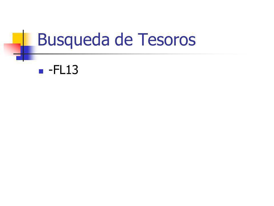 Busqueda de Tesoros -FL13