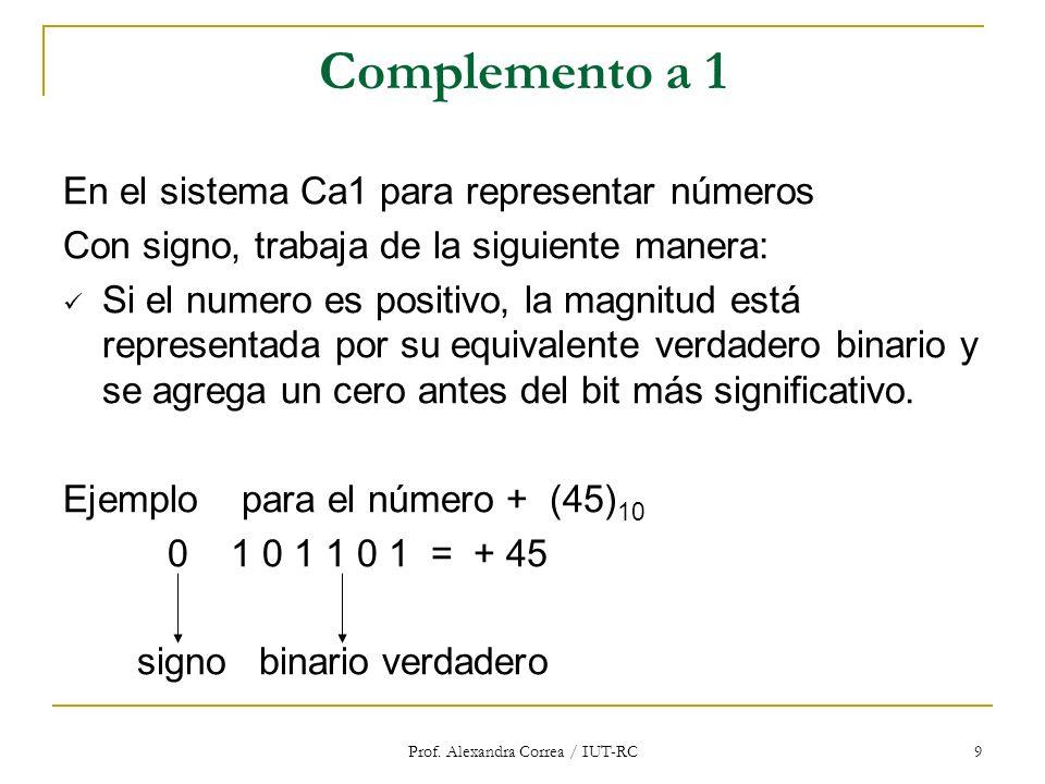 Prof. Alexandra Correa / IUT-RC