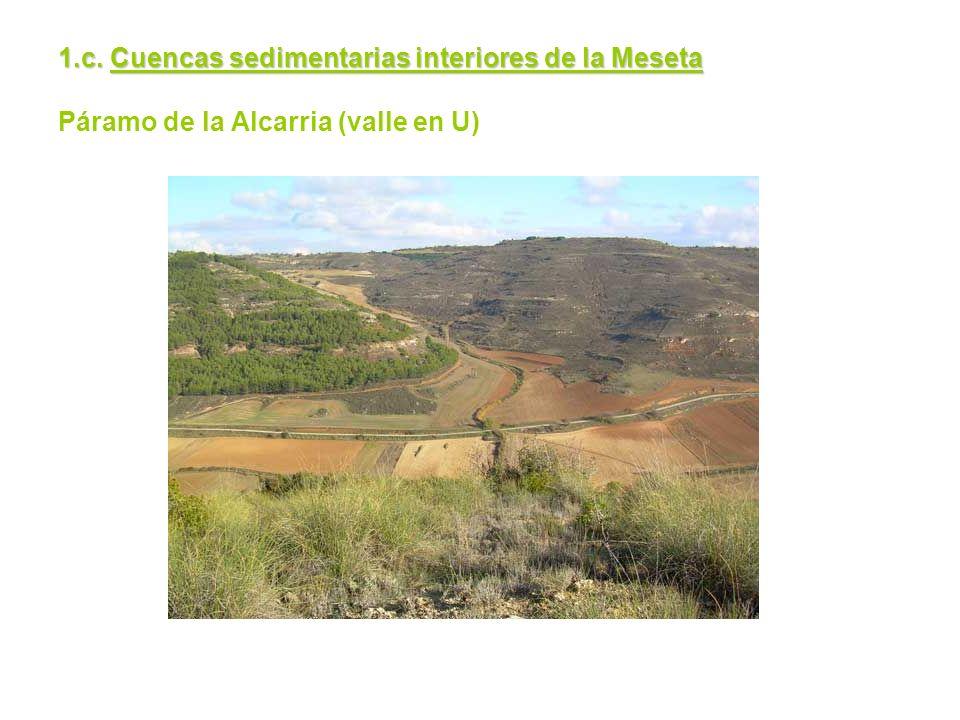1.c. Cuencas sedimentarias interiores de la Meseta Páramo de la Alcarria (valle en U)