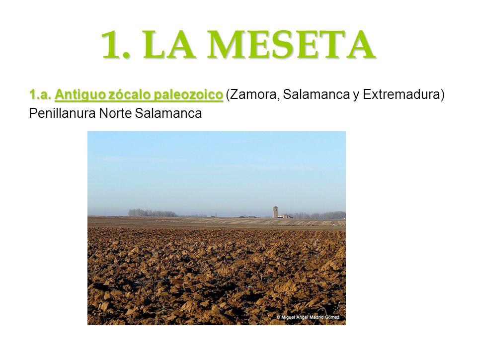 1. LA MESETA 1.a.