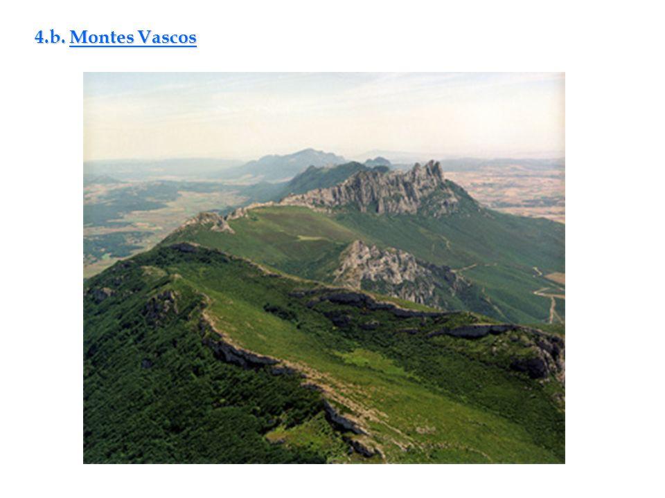 4.b. Montes Vascos
