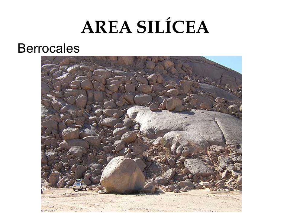AREA SILÍCEA Berrocales
