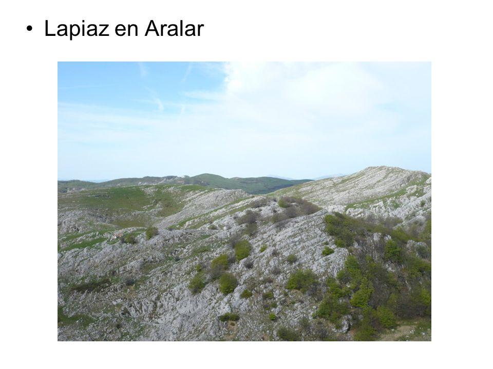 Lapiaz en Aralar