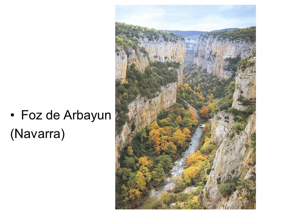 Foz de Arbayun (Navarra)