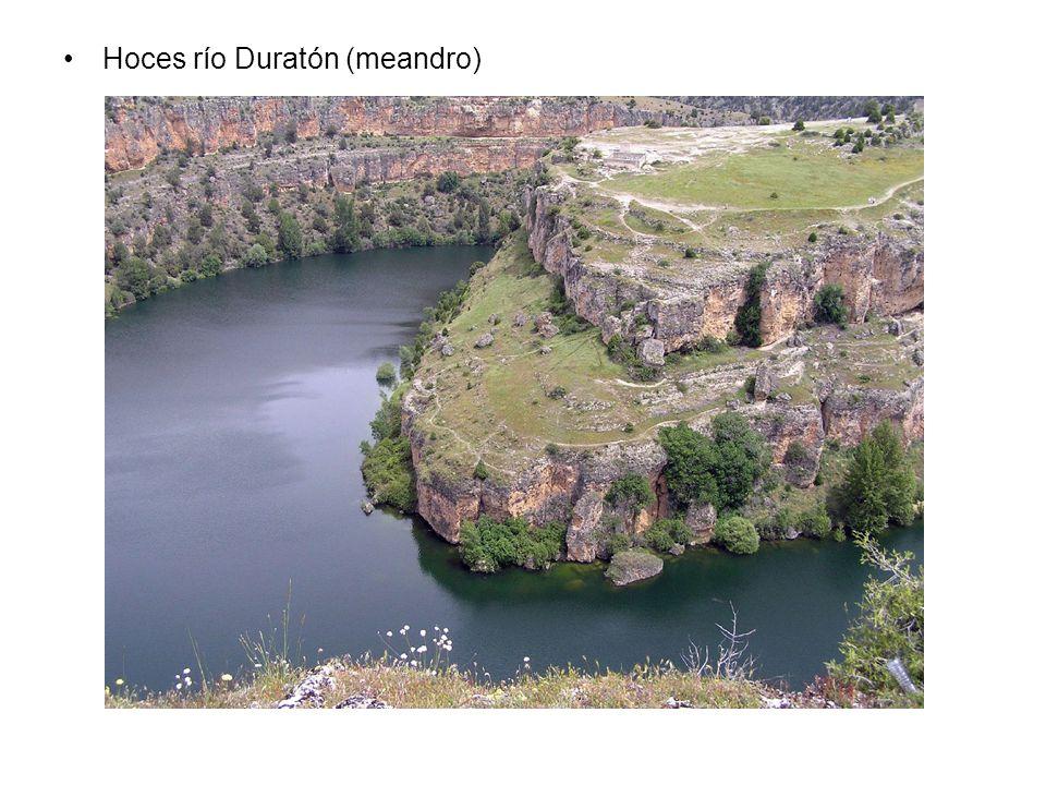 Hoces río Duratón (meandro)