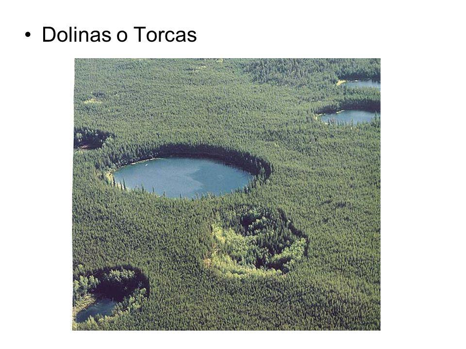 Dolinas o Torcas
