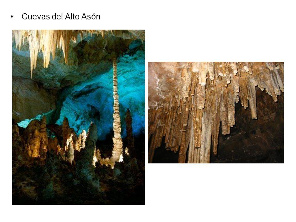 Cuevas del Alto Asón