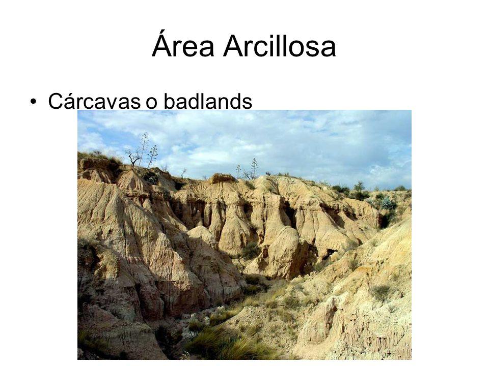 Área Arcillosa Cárcavas o badlands