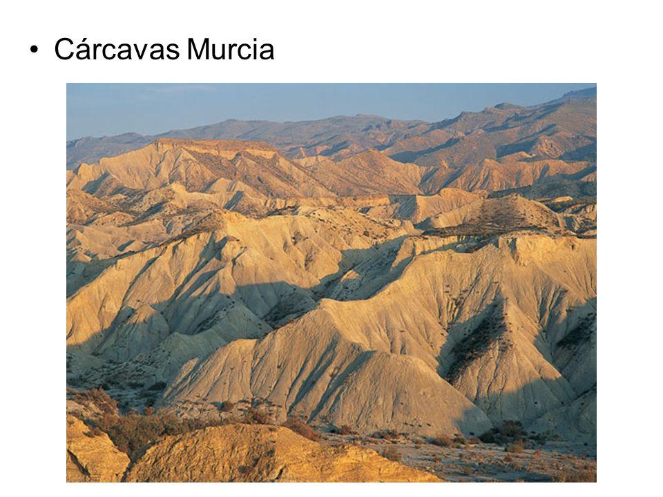 Cárcavas Murcia