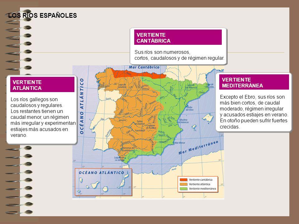 LOS RÍOS ESPAÑOLES VERTIENTE CANTÁBRICA Sus ríos son numerosos,