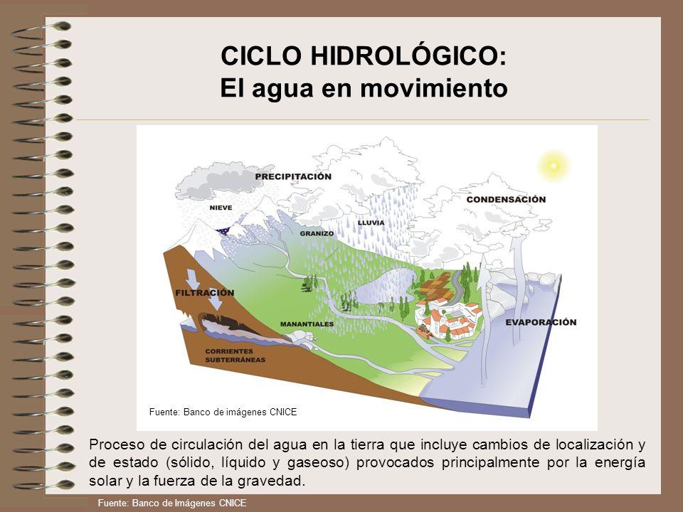 CICLO HIDROLÓGICO: El agua en movimiento