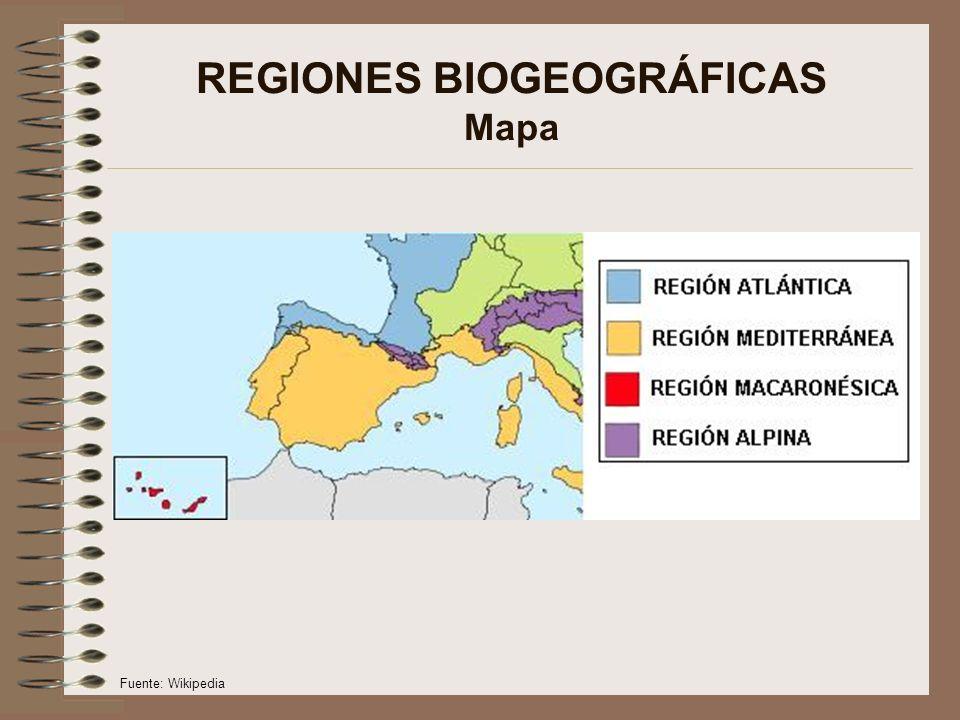 REGIONES BIOGEOGRÁFICAS Mapa