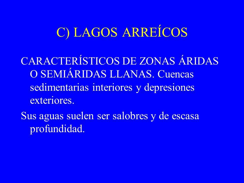 C) LAGOS ARREÍCOS CARACTERÍSTICOS DE ZONAS ÁRIDAS O SEMIÁRIDAS LLANAS. Cuencas sedimentarias interiores y depresiones exteriores.