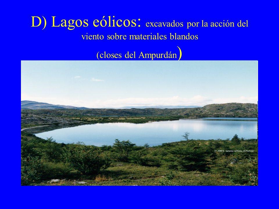 D) Lagos eólicos: excavados por la acción del viento sobre materiales blandos (closes del Ampurdán)