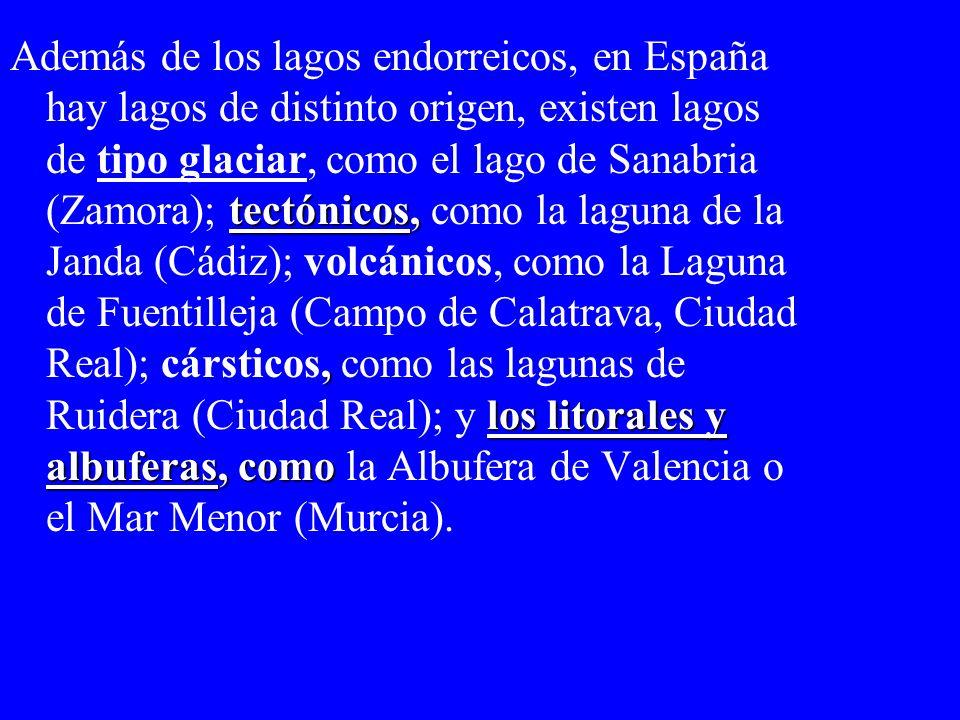 Además de los lagos endorreicos, en España hay lagos de distinto origen, existen lagos de tipo glaciar, como el lago de Sanabria (Zamora); tectónicos, como la laguna de la Janda (Cádiz); volcánicos, como la Laguna de Fuentilleja (Campo de Calatrava, Ciudad Real); cársticos, como las lagunas de Ruidera (Ciudad Real); y los litorales y albuferas, como la Albufera de Valencia o el Mar Menor (Murcia).