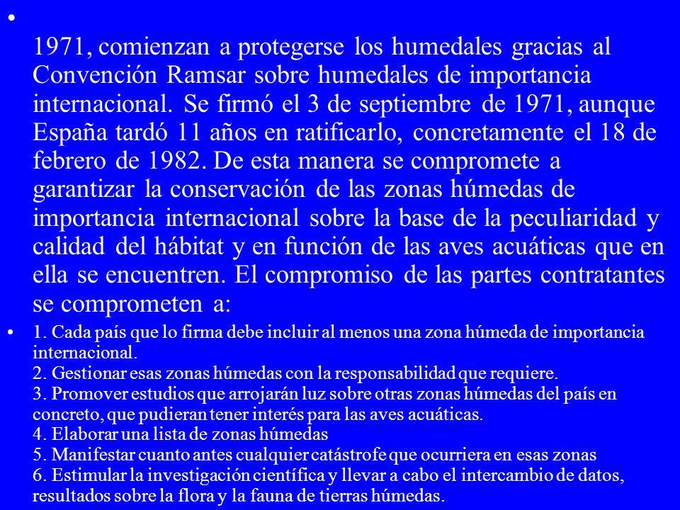 1971, comienzan a protegerse los humedales gracias al Convención Ramsar sobre humedales de importancia internacional. Se firmó el 3 de septiembre de 1971, aunque España tardó 11 años en ratificarlo, concretamente el 18 de febrero de 1982. De esta manera se compromete a garantizar la conservación de las zonas húmedas de importancia internacional sobre la base de la peculiaridad y calidad del hábitat y en función de las aves acuáticas que en ella se encuentren. El compromiso de las partes contratantes se comprometen a: