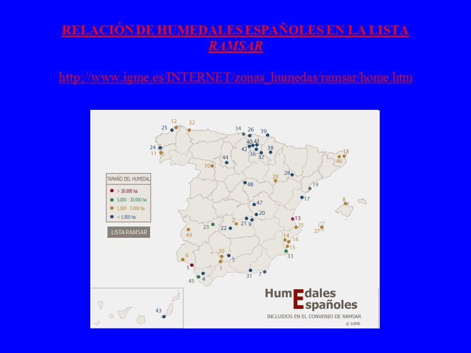 RELACIÓN DE HUMEDALES ESPAÑOLES EN LA LISTA RAMSAR http://www. igme