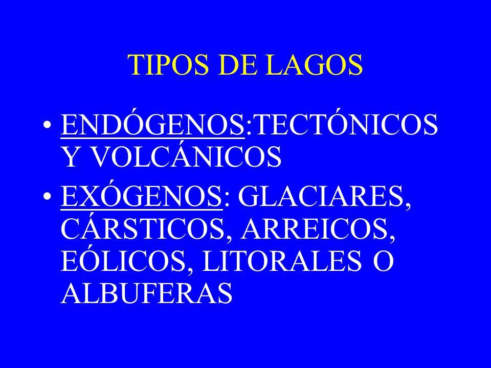 TIPOS DE LAGOS ENDÓGENOS:TECTÓNICOS Y VOLCÁNICOS.