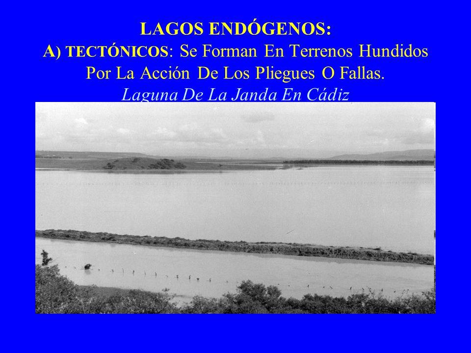 LAGOS ENDÓGENOS: A) TECTÓNICOS: Se Forman En Terrenos Hundidos Por La Acción De Los Pliegues O Fallas.