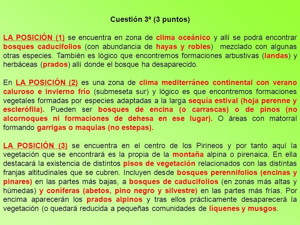 Cuestión 3ª (3 puntos)