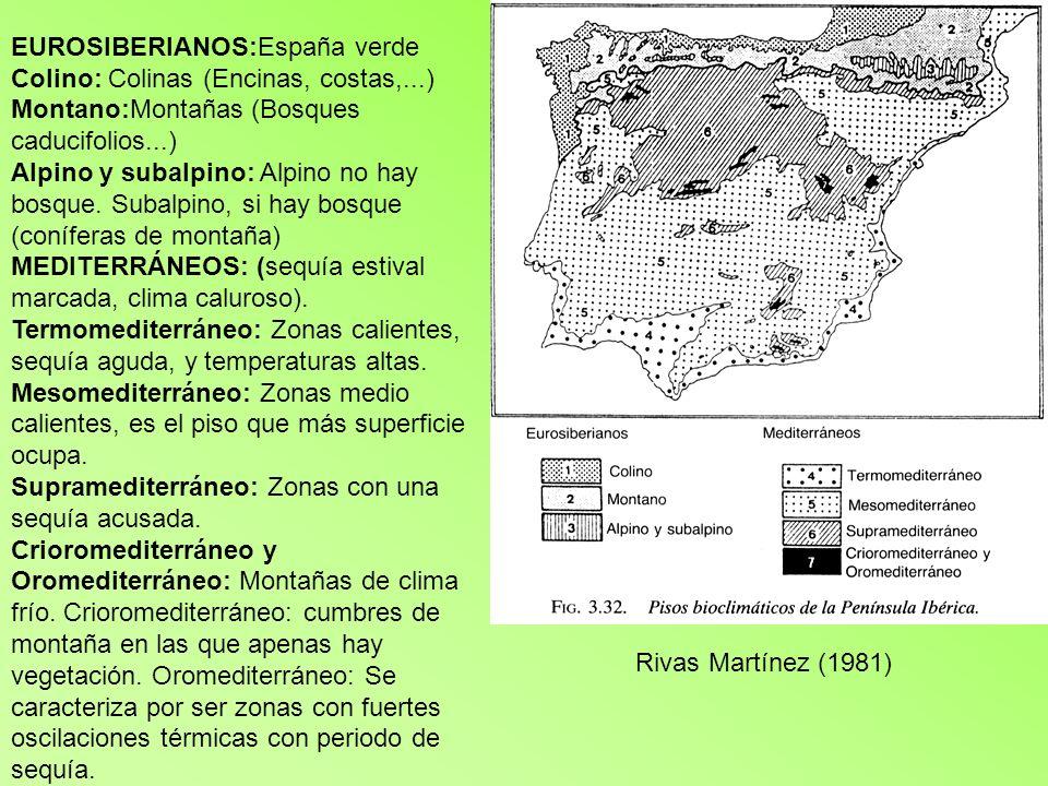 EUROSIBERIANOS:España verde Colino: Colinas (Encinas, costas,