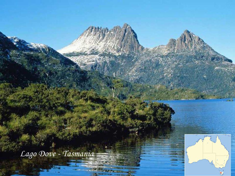 Lago Dove - Tasmania