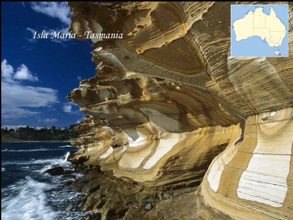 Isla María - Tasmania