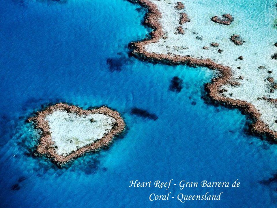Heart Reef - Gran Barrera de Coral - Queensland
