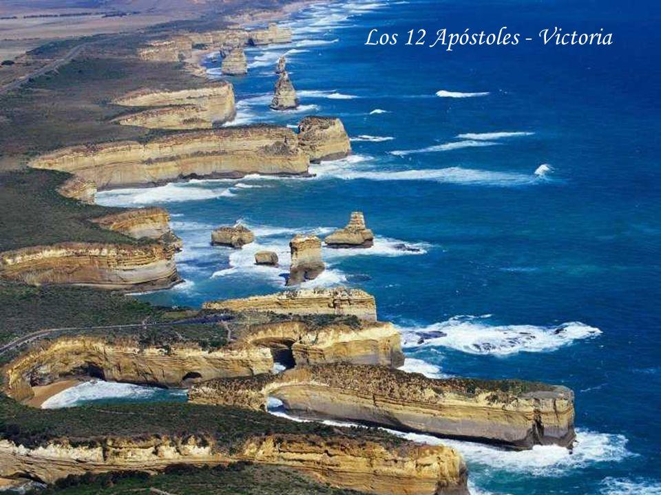 Los 12 Apóstoles - Victoria