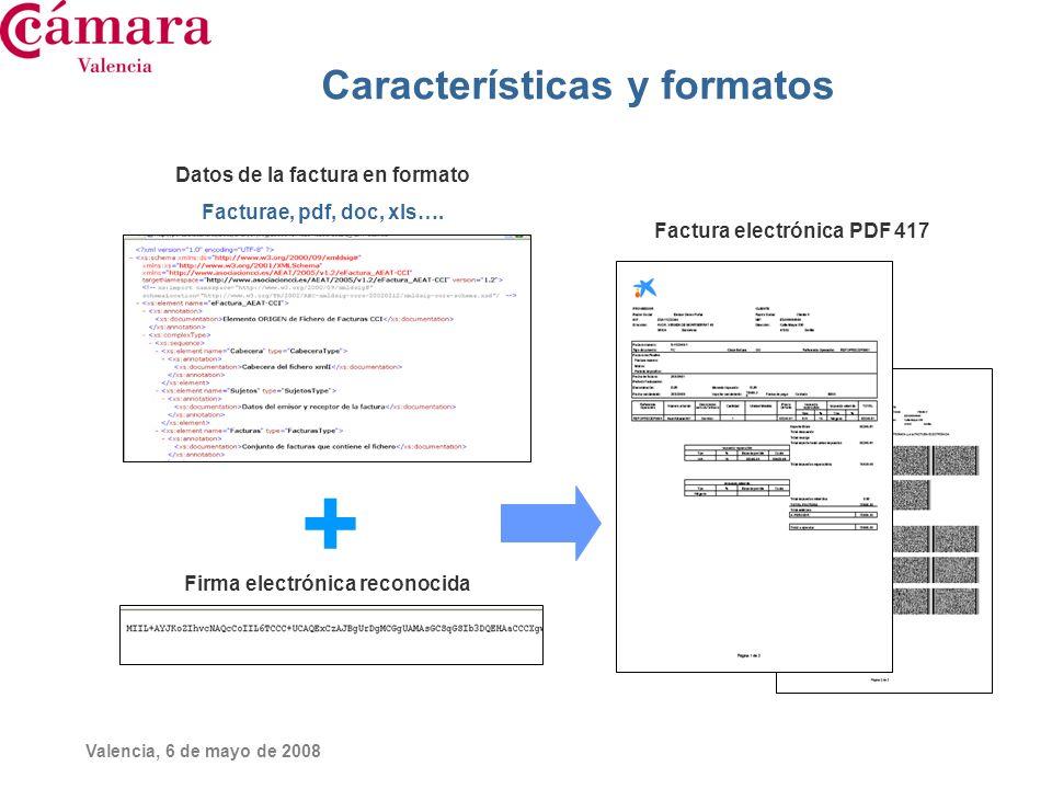 Características y formatos