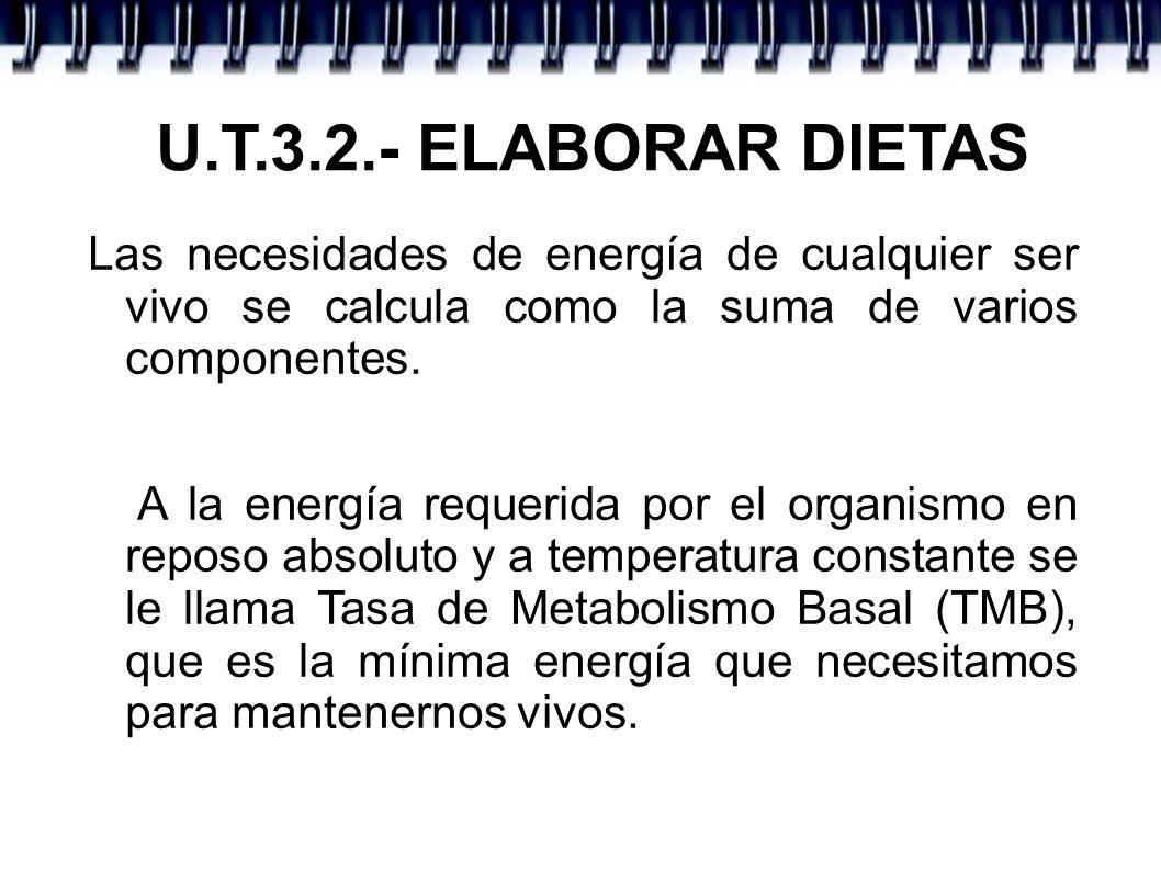 U.T.3.2.- ELABORAR DIETAS Las necesidades de energía de cualquier ser vivo se calcula como la suma de varios componentes.