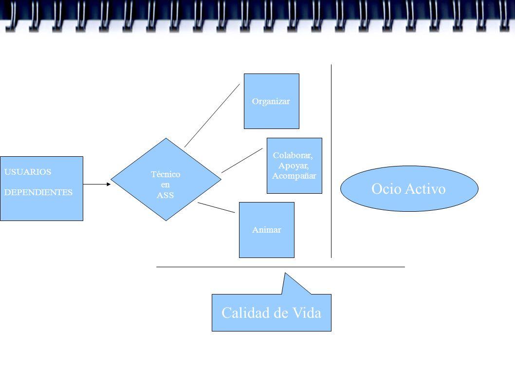 Ocio Activo Calidad de Vida Organizar Colaborar, Apoyar, Técnico