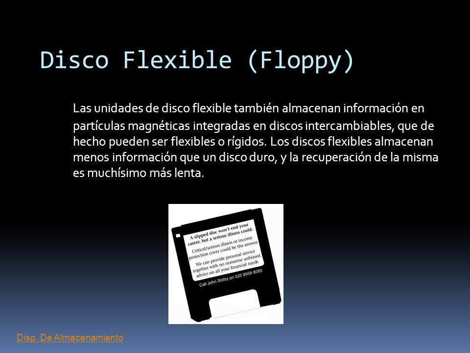Disco Flexible (Floppy)