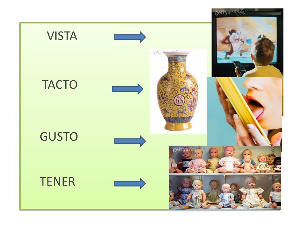 VISTA TACTO GUSTO TENER