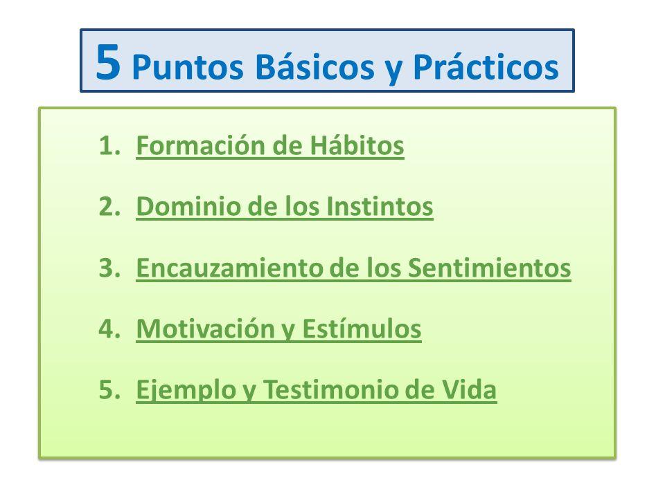 5 Puntos Básicos y Prácticos