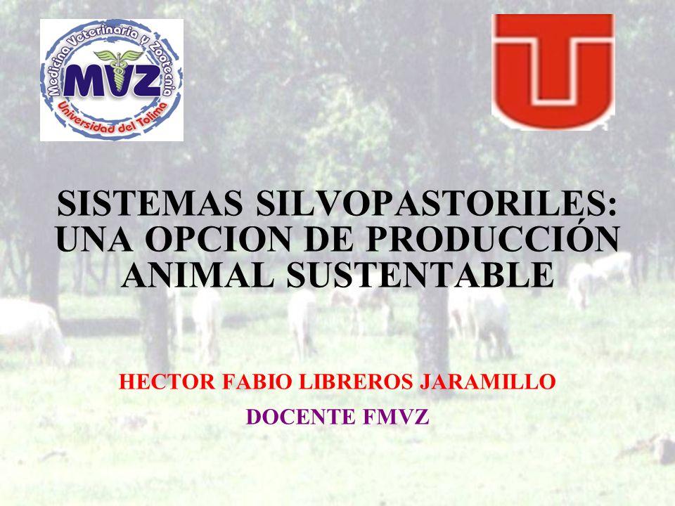 SISTEMAS SILVOPASTORILES: UNA OPCION DE PRODUCCIÓN ANIMAL SUSTENTABLE