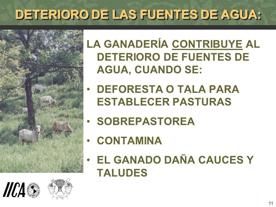 DETERIORO DE LAS FUENTES DE AGUA: