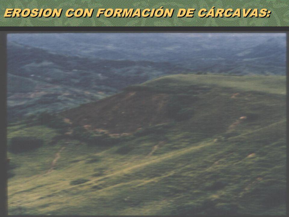 EROSION CON FORMACIÓN DE CÁRCAVAS: