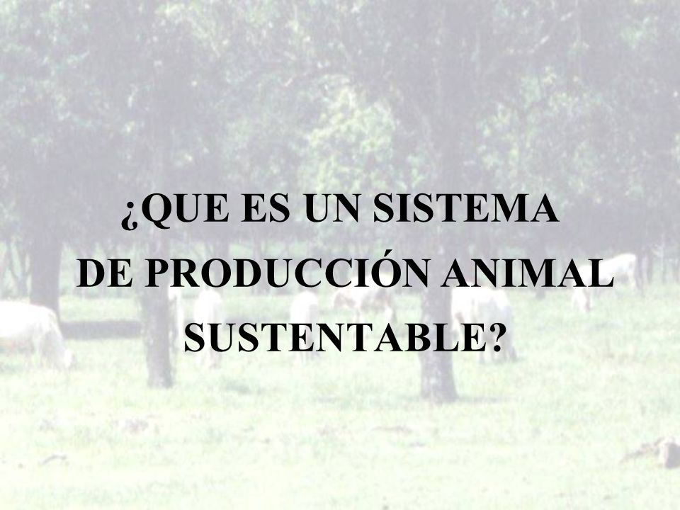 ¿QUE ES UN SISTEMA DE PRODUCCIÓN ANIMAL SUSTENTABLE