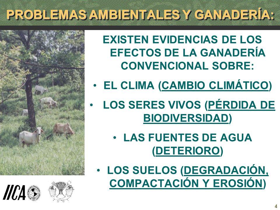 PROBLEMAS AMBIENTALES Y GANADERÍA: