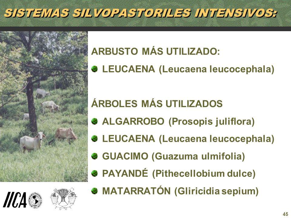 SISTEMAS SILVOPASTORILES INTENSIVOS: