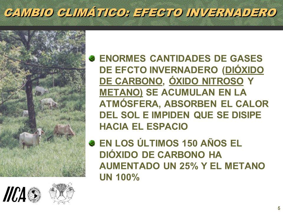 CAMBIO CLIMÁTICO: EFECTO INVERNADERO