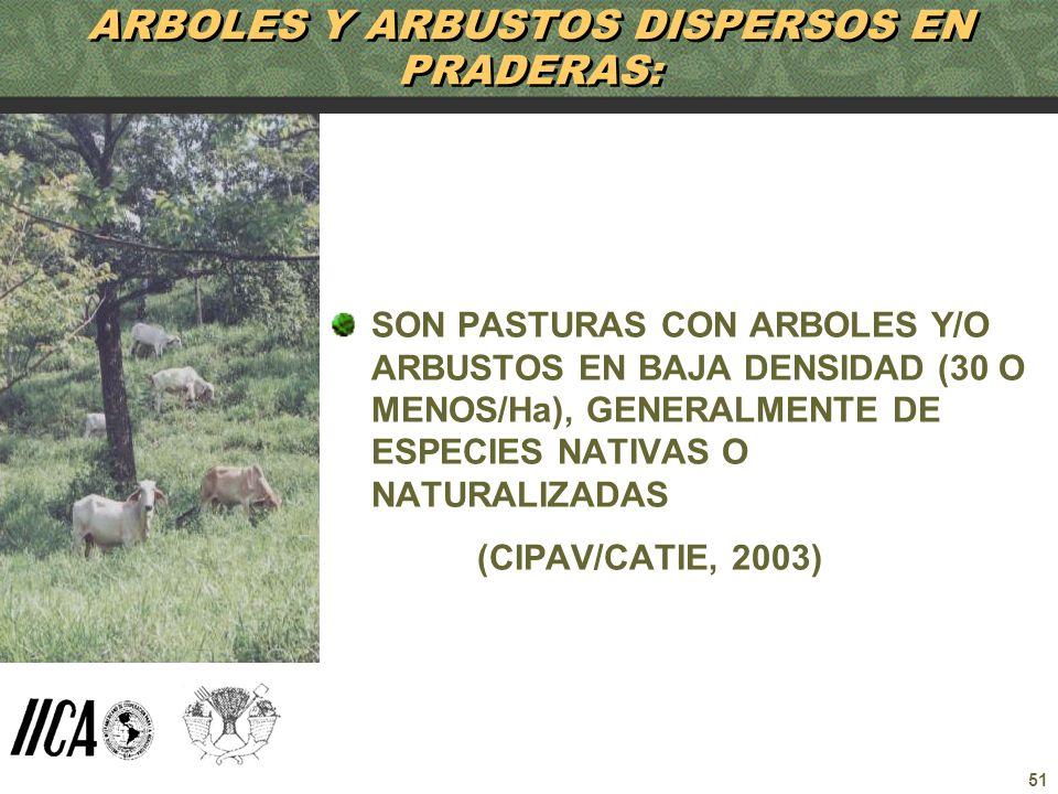 ARBOLES Y ARBUSTOS DISPERSOS EN PRADERAS: