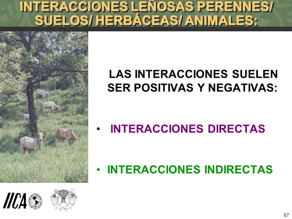 INTERACCIONES LEÑOSAS PERENNES/ SUELOS/ HERBÁCEAS/ ANIMALES: