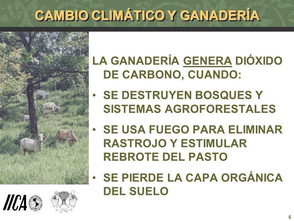 CAMBIO CLIMÁTICO Y GANADERÍA