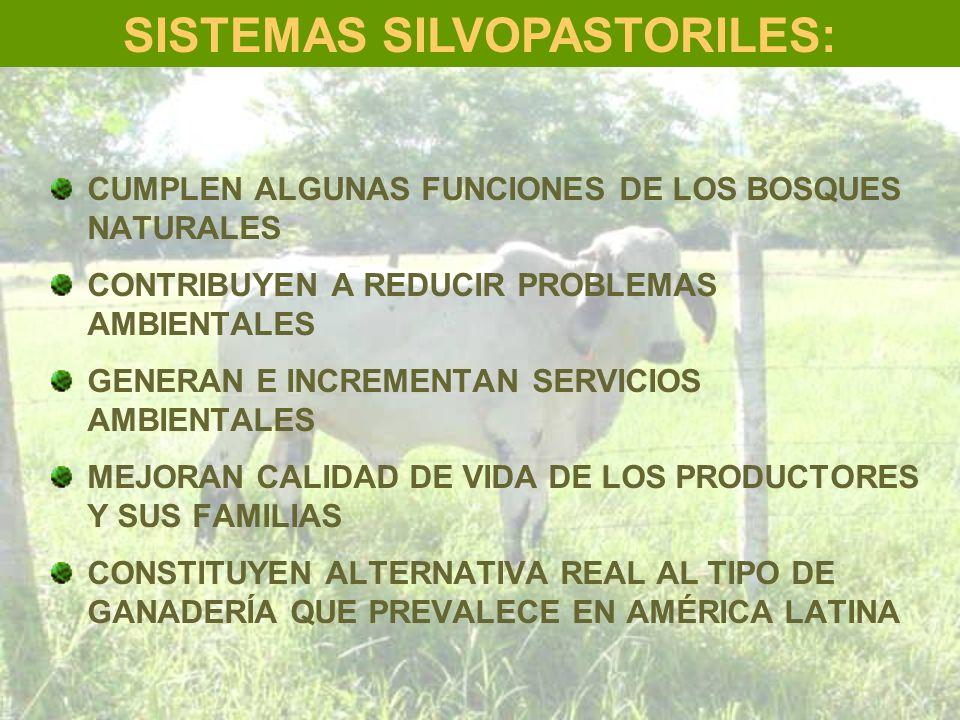 SISTEMAS SILVOPASTORILES: