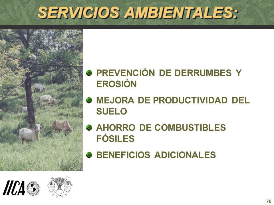 SERVICIOS AMBIENTALES: