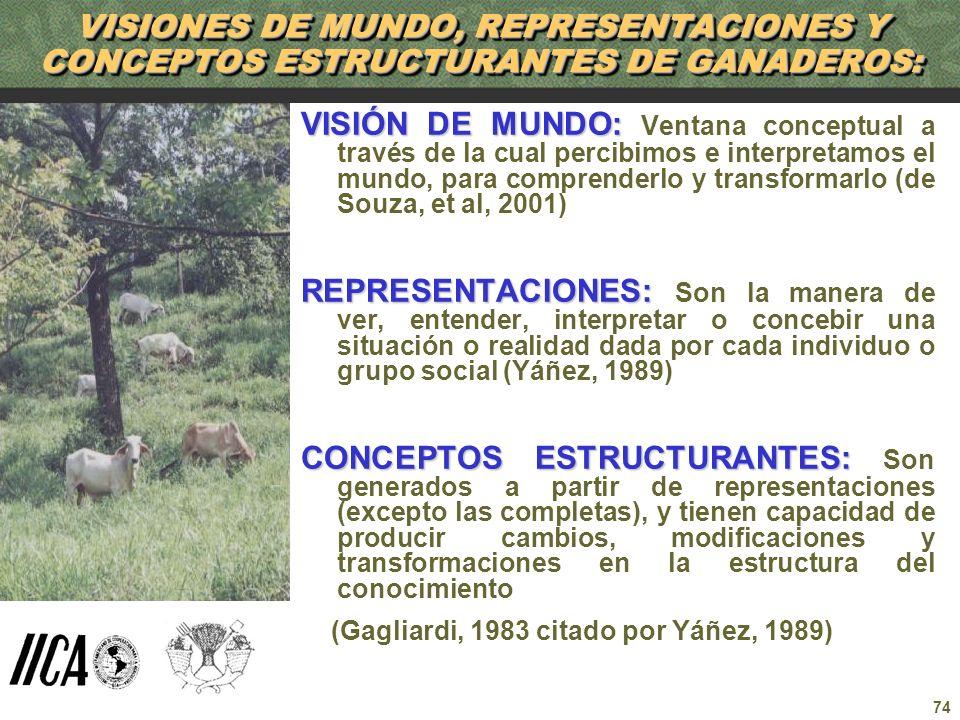 VISIONES DE MUNDO, REPRESENTACIONES Y CONCEPTOS ESTRUCTURANTES DE GANADEROS:
