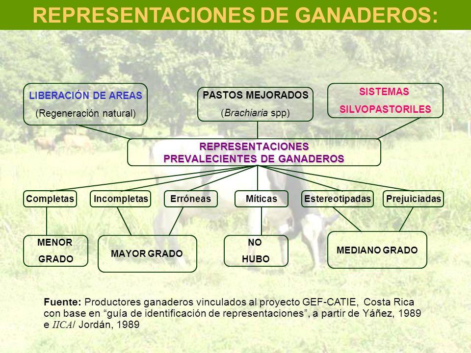 REPRESENTACIONES DE GANADEROS: