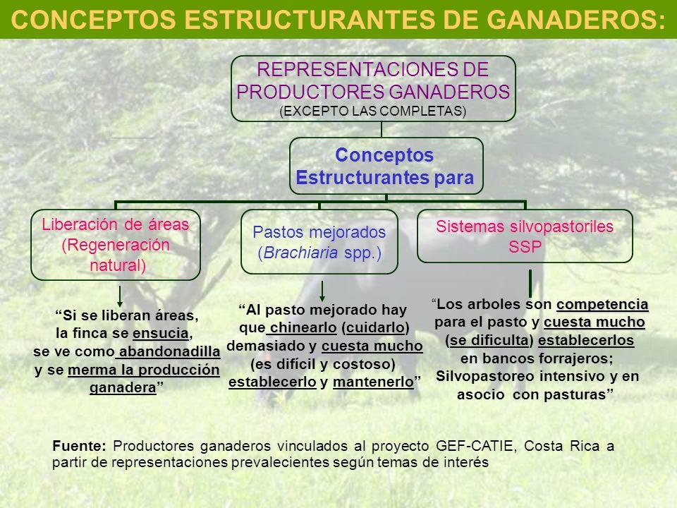 CONCEPTOS ESTRUCTURANTES DE GANADEROS: